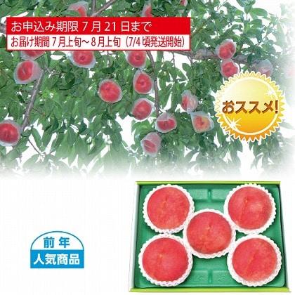 <※お中元対象商品>山梨又は福島県産 水蜜桃 1.2kg