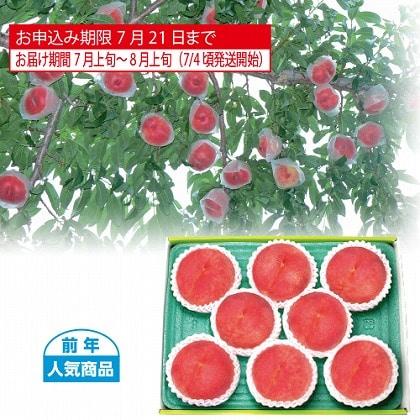 <※お中元対象商品>山梨又は福島県産 水蜜桃 1.8kg