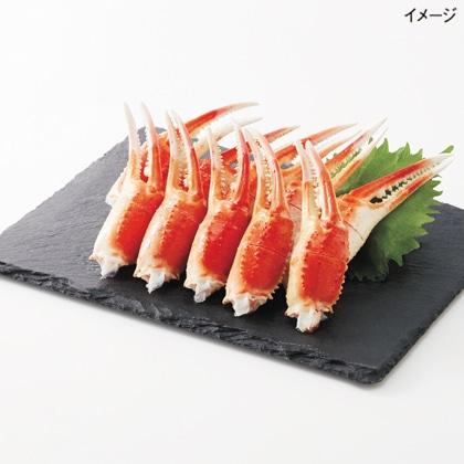<※お中元対象商品>ボイルずわい蟹2本爪
