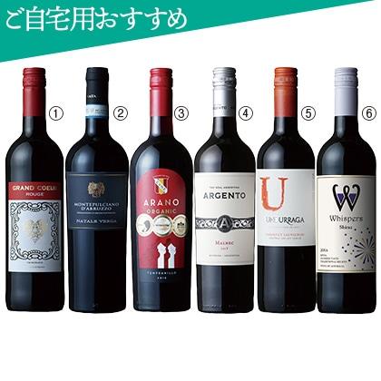 <※お中元対象商品>世界周遊赤ワイン6本セット