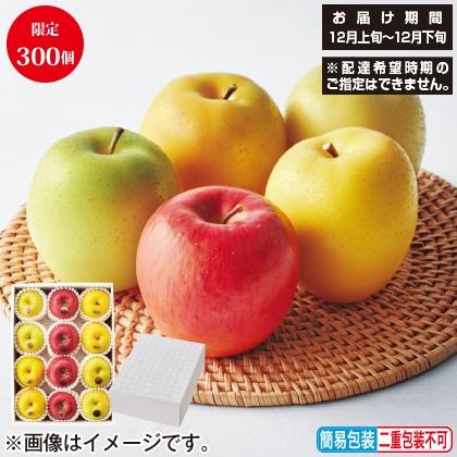 <※お歳暮対象商品><定松>5種林檎の詰合せ