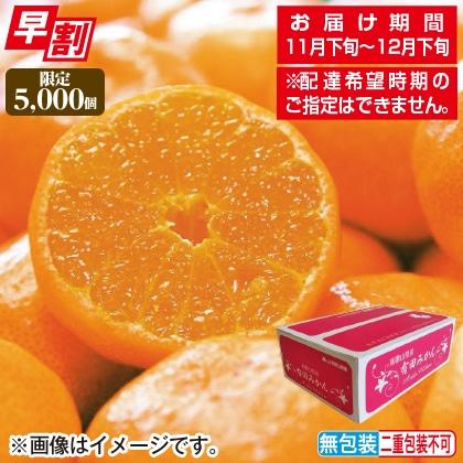 <※お歳暮対象商品>和歌山県産 有田みかん 3kg