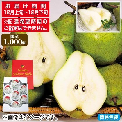 <※お歳暮対象商品>サンタクロースの果実