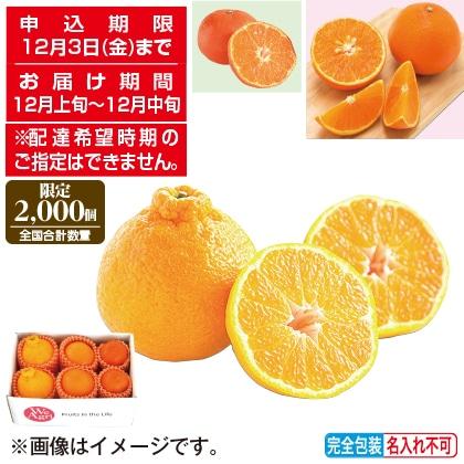 <※お歳暮対象商品>冬のフルーツ柑橘3種セット