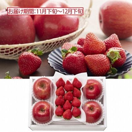 <※お歳暮対象商品>冬の赤い情熱 イチゴとりんご