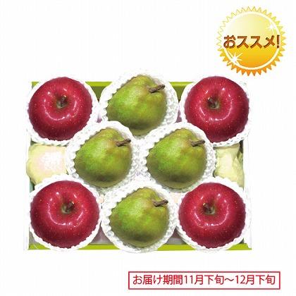 <※お歳暮対象商品>山形 ラ・フランス&青森 サンふじりんご