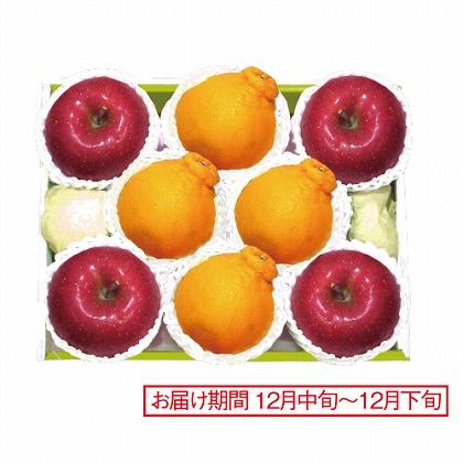 <※お歳暮対象商品>佐賀 デコポン&青森 サンふじりんご