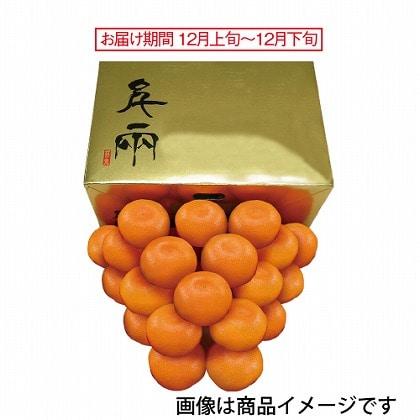 <※お歳暮対象商品>愛媛 日の丸ゴールドみかん