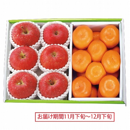 <※お歳暮対象商品>青森 サンふじりんご&和歌山 有田みかん