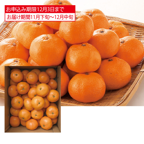 <※お歳暮対象商品>和歌山県産 有田みかん