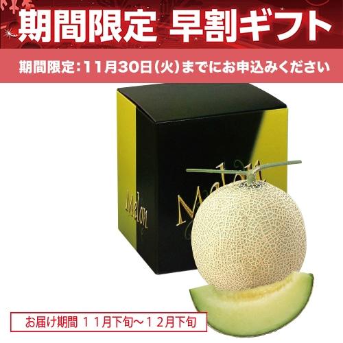 <※お歳暮対象商品>熊本県産 マスクメロン