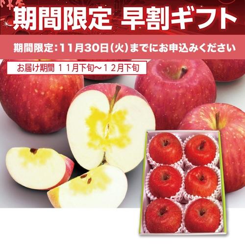 <※お歳暮対象商品>青森県産 サンふじりんご (蜜入)