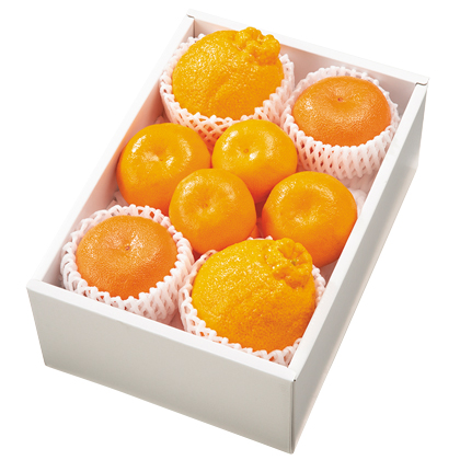 <※お歳暮対象商品>柑橘詰合せ