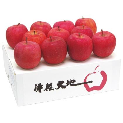 <※お歳暮対象商品>津軽大地乃会 サンふじりんご