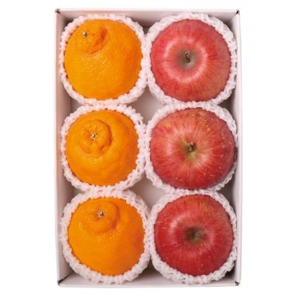 <※お歳暮対象商品>りんご・デコポン詰合せ