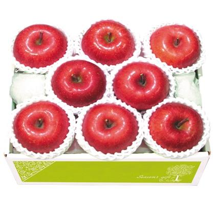 <※お歳暮対象商品>青森県産 蜜入り サンふじりんご
