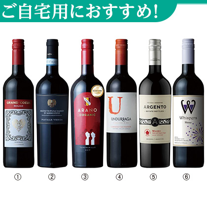 <※お歳暮対象商品>世界周遊赤ワイン6本セット
