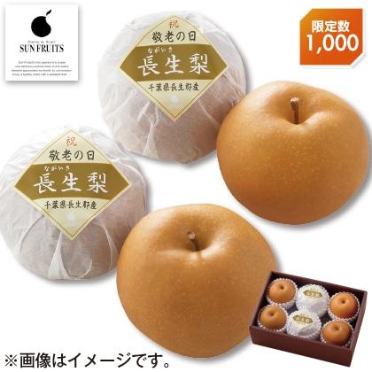 〈※敬老の日対象商品〉千葉県産 長生梨