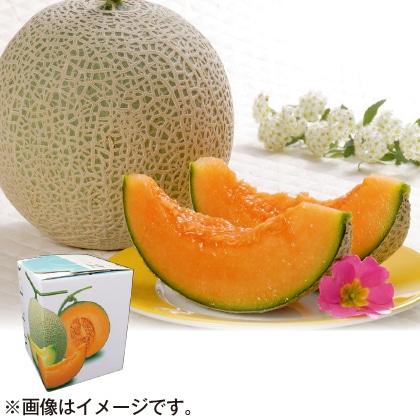 〈※敬老の日対象商品〉北海道赤肉メロン