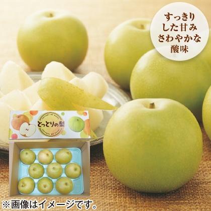 〈※敬老の日対象商品〉鳥取県産 二十世紀梨