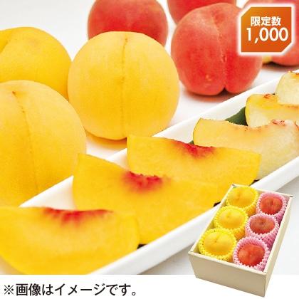 〈※敬老の日対象商品〉福島県産白桃&黄桃