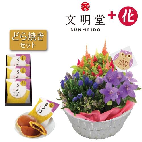 〈※敬老の日対象商品〉秋の3種花カゴと文明堂どら焼き