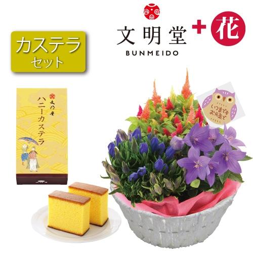〈※敬老の日対象商品〉秋の3種花カゴと文明堂カステラ