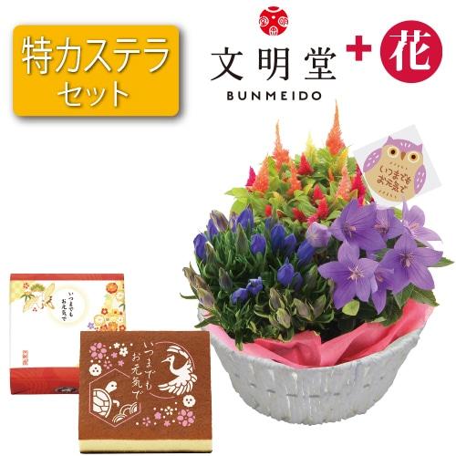 〈※敬老の日対象商品〉秋の3種花カゴと文明堂特カステラ