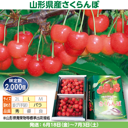 佐藤錦(5)500g(L、秀:バラ詰)×2