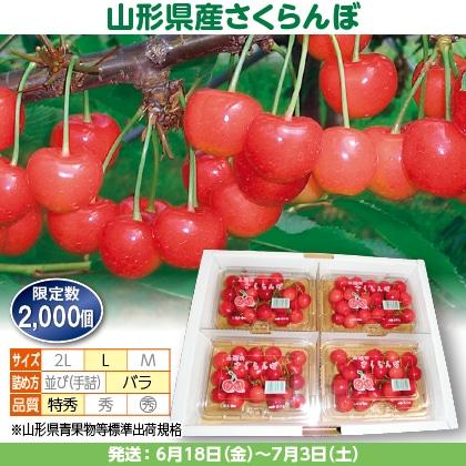 佐藤錦(6)200g(L、特秀:バラ詰)×4