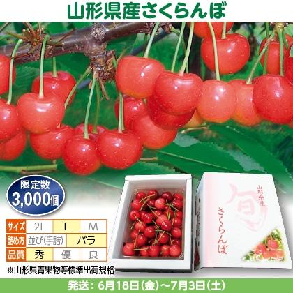 佐藤錦(7)500g(L、秀:バラ詰)