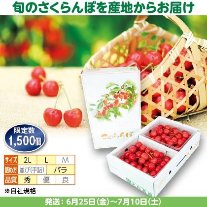 紅秀峰(3)500g(L又は2L、秀:バラ詰)×2