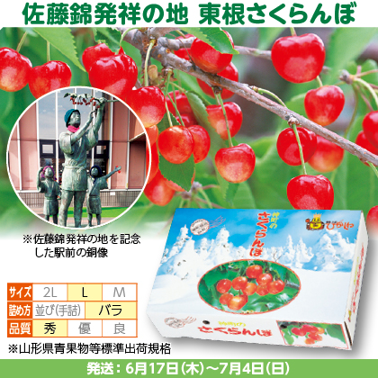 佐藤錦(11)500g(L、秀:バラ詰)×2、フードパック入