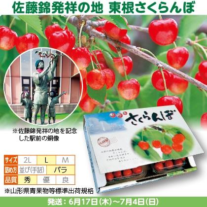 佐藤錦(12)250g(L、秀:バラ詰)×2、フードパック入