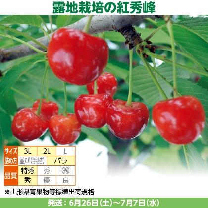 紅秀峰(5)100g(2L又は3L、特秀又は秀:バラ詰)×3