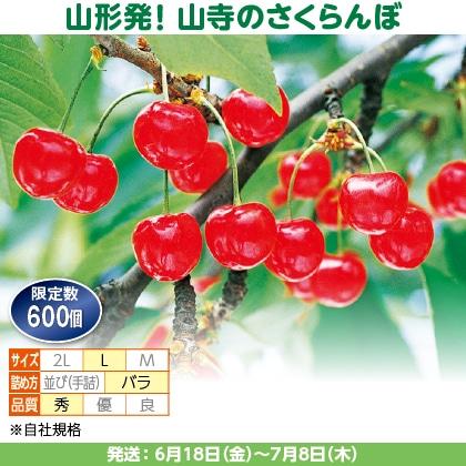 佐藤錦(21)500g(L、秀:バラ詰)、保冷剤入
