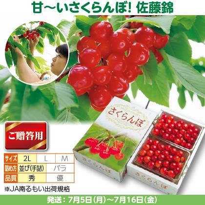 佐藤錦(23)500g(2L、秀:手詰)×2
