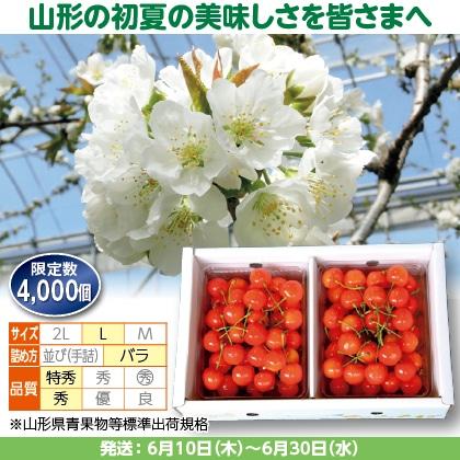佐藤錦(25)350g(L、特秀・秀混:バラ詰)×2、化粧箱入