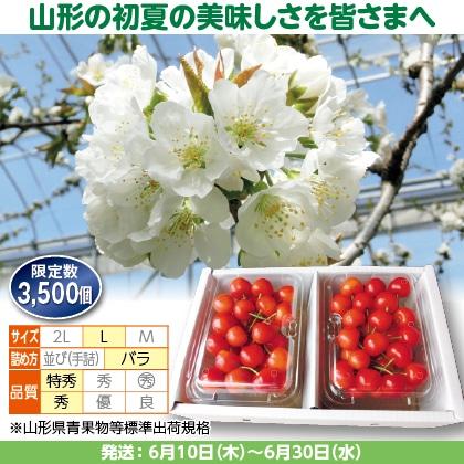 佐藤錦(26)250g(L、特秀・秀混:バラ詰)×2、化粧箱入