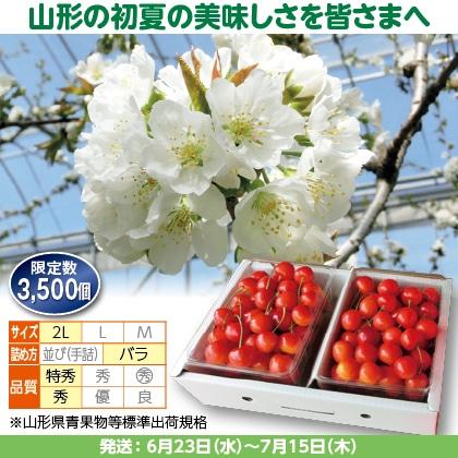 紅秀峰(7)500g(2L、特秀・秀混:バラ詰)×2、化粧箱入