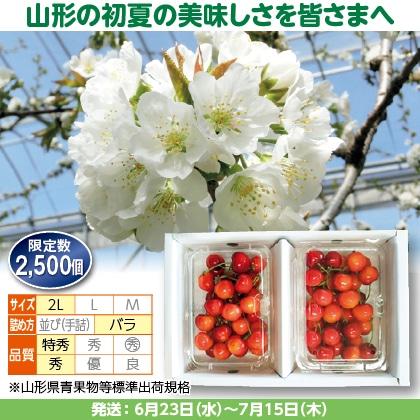 紅秀峰(9)250g(2L、特秀・秀混:バラ詰)×2、化粧箱入