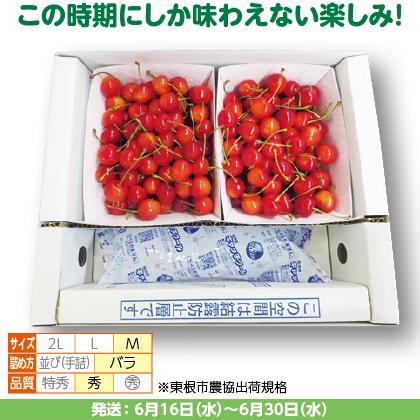 佐藤錦(27)500g(M、秀:バラ詰)×2、保冷剤入