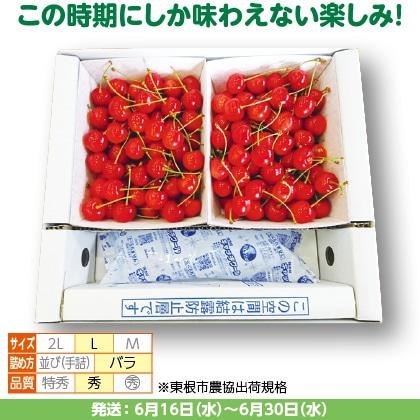 佐藤錦(28)500g(L、秀:バラ詰)×2、保冷剤入