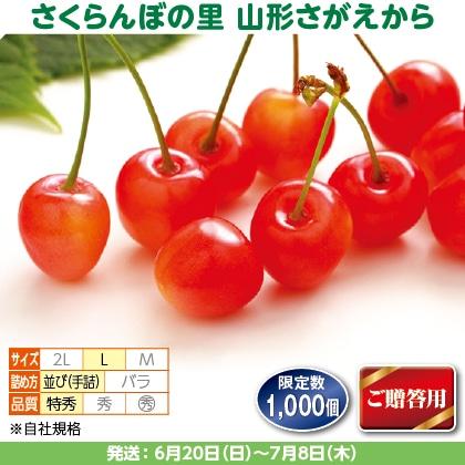 佐藤錦(32)550g(L、特秀:手詰)、保冷剤入