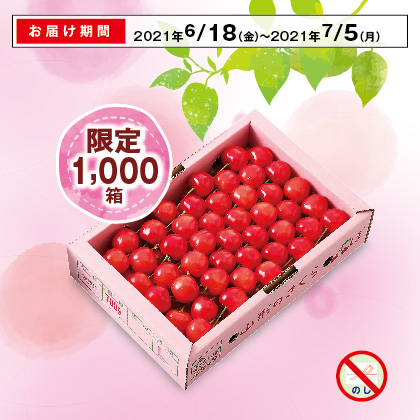 山形のさくらんぼ(佐藤錦)秀品・Lサイズ 700g(手詰)