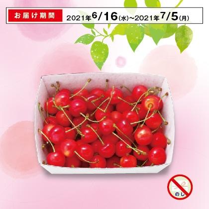 山形のさくらんぼ(佐藤錦)秀品・Lサイズ 500g(バラ詰)