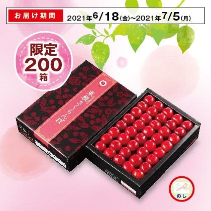 山形のさくらんぼ(佐藤錦)秀品以上・2Lサイズ 500g(手並)