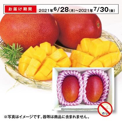 沖縄のアップルマンゴー 600g