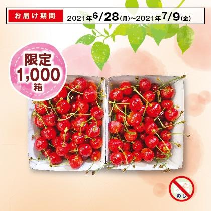 山形のさくらんぼ(紅秀峰)秀品・2Lサイズ 500g×2(バラ詰)