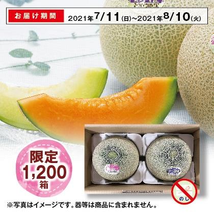 山形の庄内メロン(赤肉・青肉)2.4kg